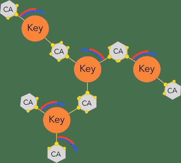 3D monomer